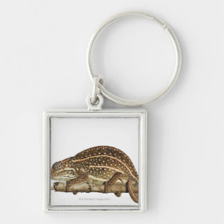 Jewelled chameleon, Campan's chameleon Silver-Colored Square Key Ring