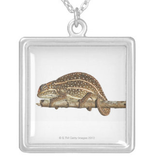 Jewelled chameleon, Campan's chameleon Silver Plated Necklace