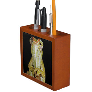 Jewelled chameleon, or Campan's chameleon Desk Organiser