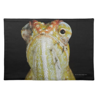 Jewelled chameleon, or Campan's chameleon Placemat