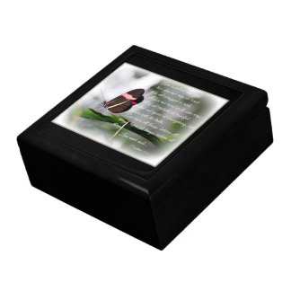 Jewelry Box/Large Postman Butterfly with Quote Large Square Gift Box