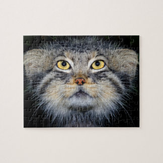 jigsaw - pallas cat puzzle