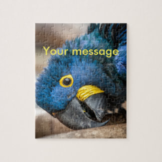 Jigsaw puzzle cute blue Hyacinth Macaw parrot
