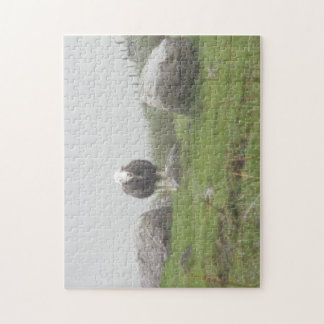 Jigsaw puzzle of Sheep in Lake District