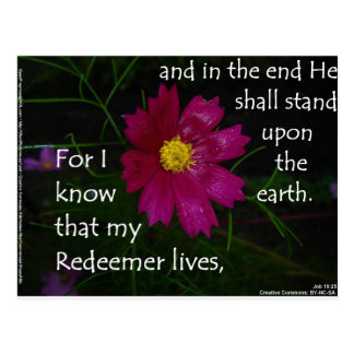 Job 19 25 I know that my Redeemer Lives Post Card