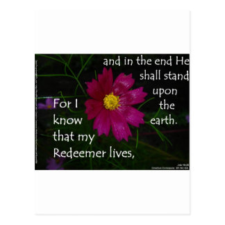 Job 19 25 I know that my Redeemer Lives Postcards