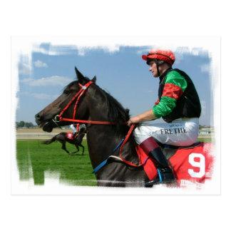 Jockey and Horse Postcard