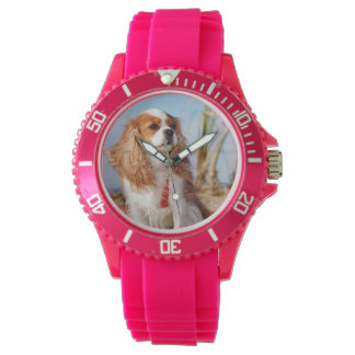 Joey Blenheim Cavalier  Spaniel Watch