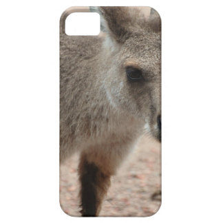 Joey Kangaroo Ready to Hop Case For The iPhone 5