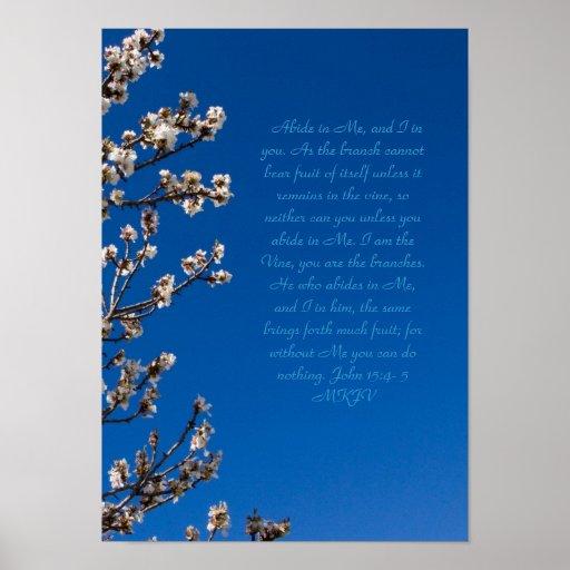 John 15:4-5 Abide Poster