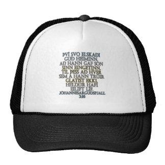 John 3 16 Icelandic Hats