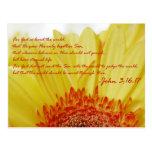 John 3:16 in Spring Postcards