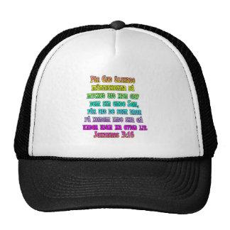 John 3 16 Swedish Hat