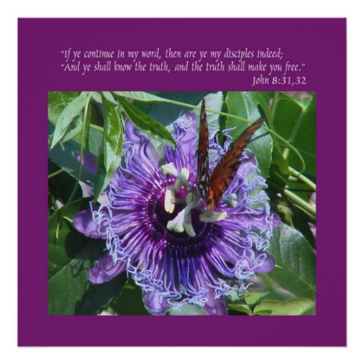 John 8 31:32 Print/Poster Poster