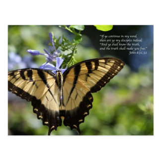 John 8 Yellow Swallowtail Butterfly Postcard