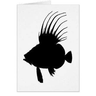 john dory fish greeting card