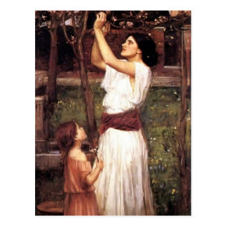 John William Waterhouse- Gathering Almond Blossoms Postcard