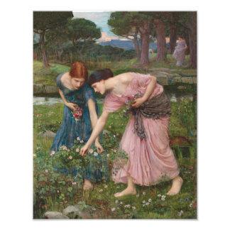 "John William Waterhouse ""Gathering Rosebuds"" Print Photo Print"