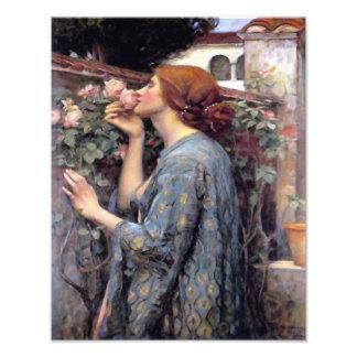 "John William Waterhouse ""The Soul of the Rose"" Pri Photo Print"