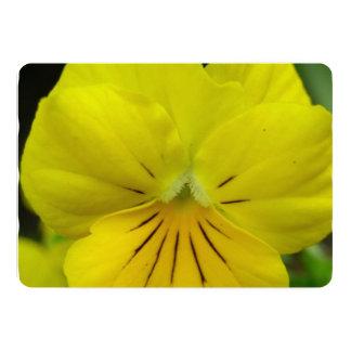 Johnny Jump Up Flowers 13 Cm X 18 Cm Invitation Card