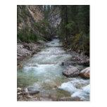Johnston Canyon Step Falls Postcards