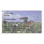 Johnston Island National Wildlife Refuge Business Cards
