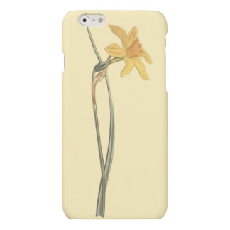 Jonquil Daffodil Yellow Flower Illustration iPhone 6 Plus Case
