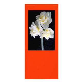 Jonquil Flower - Ecclesiastes 3:1 Rack Card Template