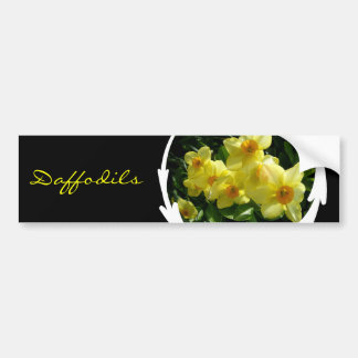 Jonquils/Daffodils/Narcissus Bumper Sticker