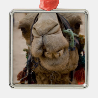 Jordan, Ancient Nabataean city of Petra. Local Christmas Ornament