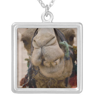 Jordan, Ancient Nabataean city of Petra. Local Silver Plated Necklace