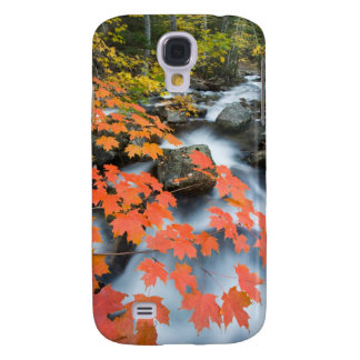 Jordan Stream in fall in Maine's Acadia National Galaxy S4 Case