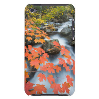 Jordan Stream in fall in Maine's Acadia National iPod Touch Case