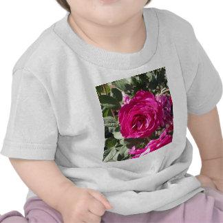 Jorianda Rose Tee Shirt