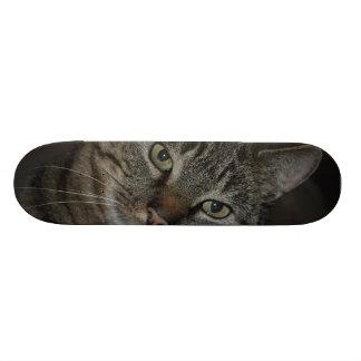 Jos the cat custom skate board