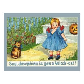 Josephine the witch Cat Postcard
