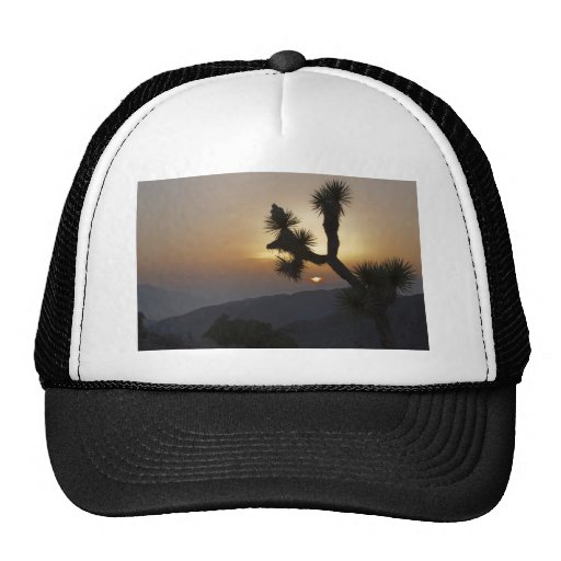 Joshua Tree at sunset Mesh Hat