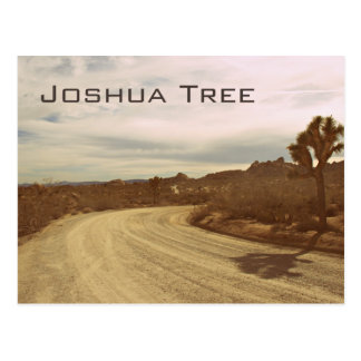 Joshua Tree, California Postcard