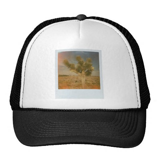 Joshua Tree Decorated Trucker Hat