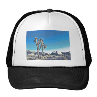 Joshua Tree Drawing Cap