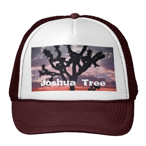 Joshua Tree Hats