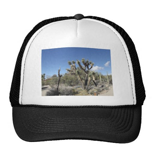 Joshua Tree Trucker Hat