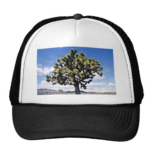 Joshua Tree - Joshua Tree National Park Hats