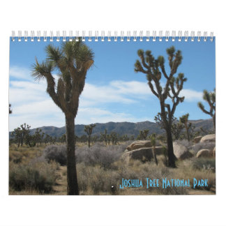 Joshua Tree National Park 2017 Wall Calendar