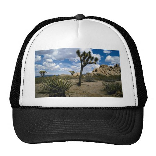 Joshua Tree National Park, California, U.S.A. Trucker Hat