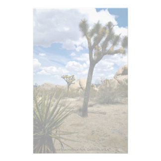 Joshua Tree National Park California U S A Personalized Stationery