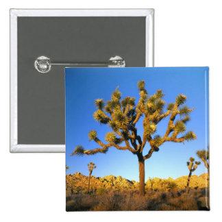 Joshua Tree National Park, California. USA. 15 Cm Square Badge