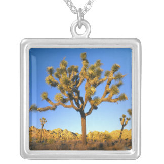 Joshua Tree National Park, California. USA. Silver Plated Necklace
