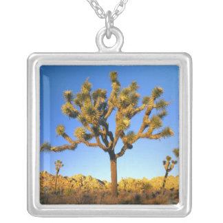 Joshua Tree National Park, California. USA. Square Pendant Necklace