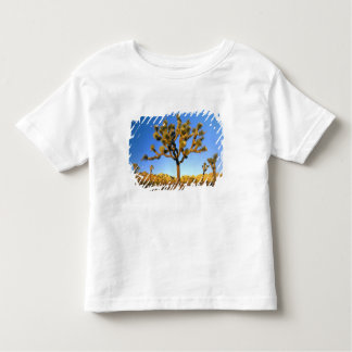 Joshua Tree National Park, California. USA. T Shirt